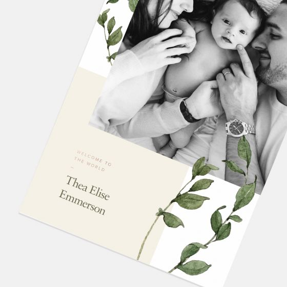 Simple Greenery Baby Announcement