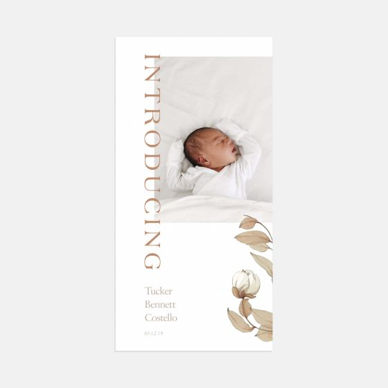 Timeless Introduction Birth Announcement