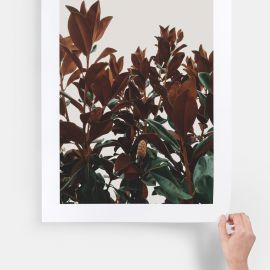 /large-format-print-main01-tropical-leaves_2x.jpg