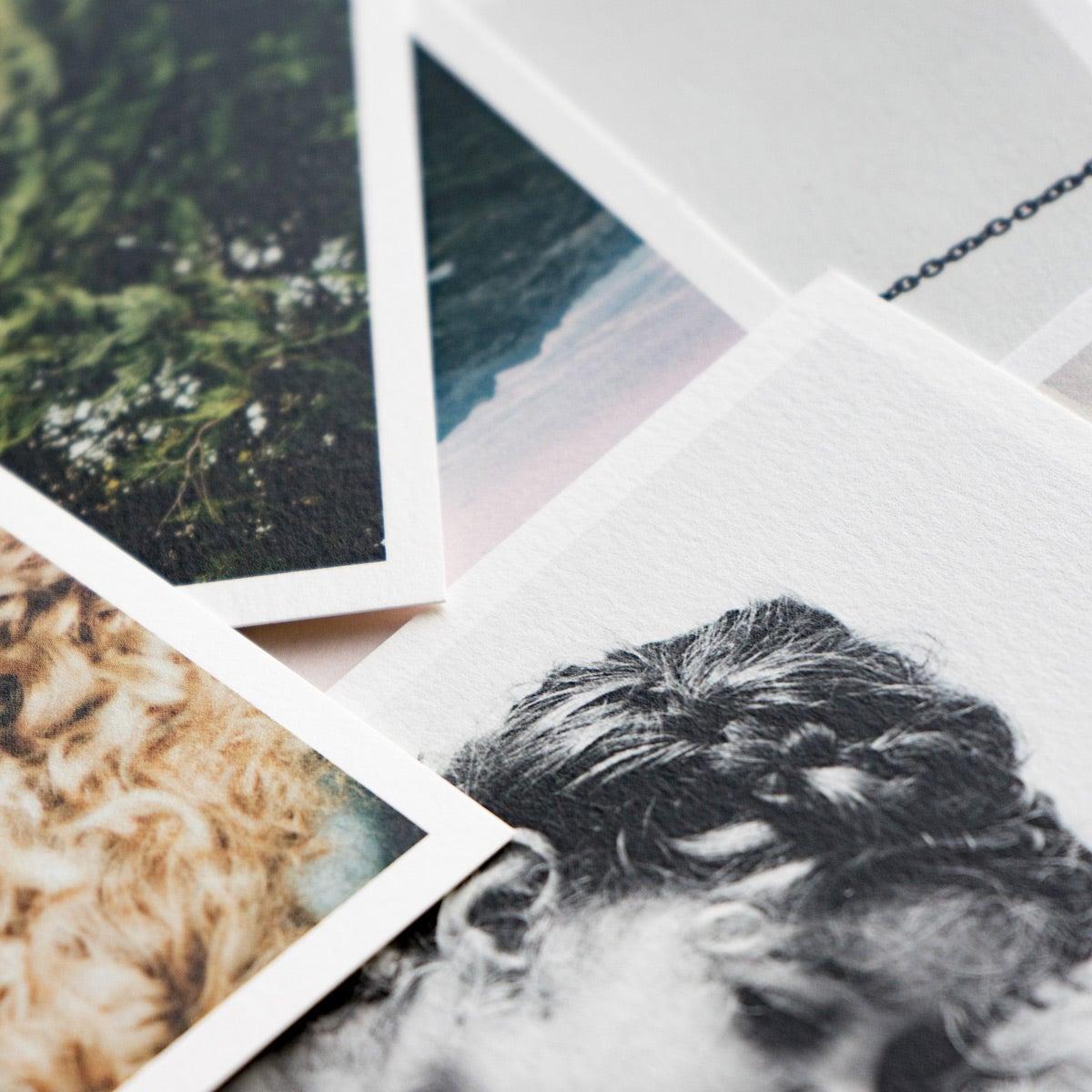 Wood Block & Prints
